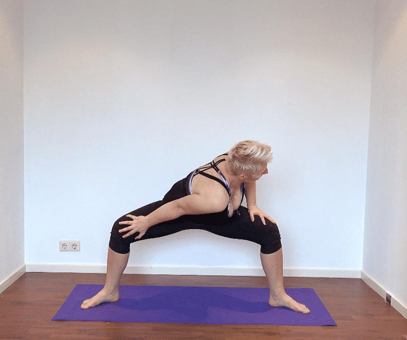 Vinyasa Yoga Spinal Twist 51 min